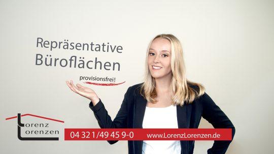 Werbeplakat Fotografie Holstengalerie/ Lorenz lorenzen Immobilien